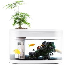 Акваферма Xiaomi Descriptive Geometry Amphibious Ecological View Fish Tank HF-JHYG001